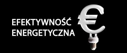 Efektywność energetyczna w nowej perspektywie finansowej UE dla woj. śląskiego